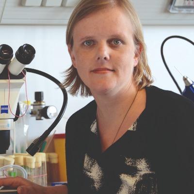 Portrait Silies, Univ.-Prof. Dr. Marion