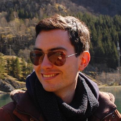 Portrait Bolognini, Giovanni